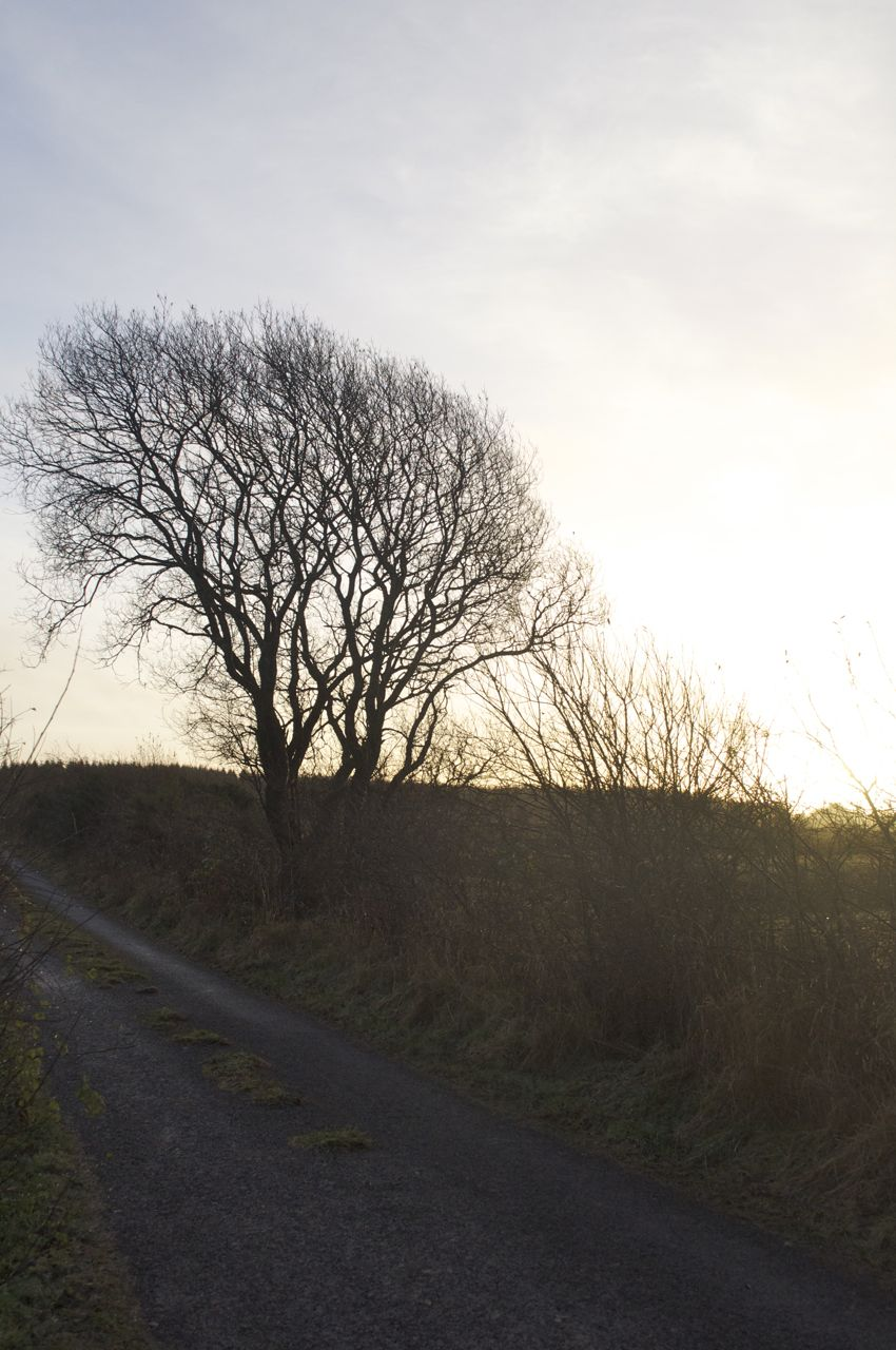 16th December - a bright start to an otherwise wet day...