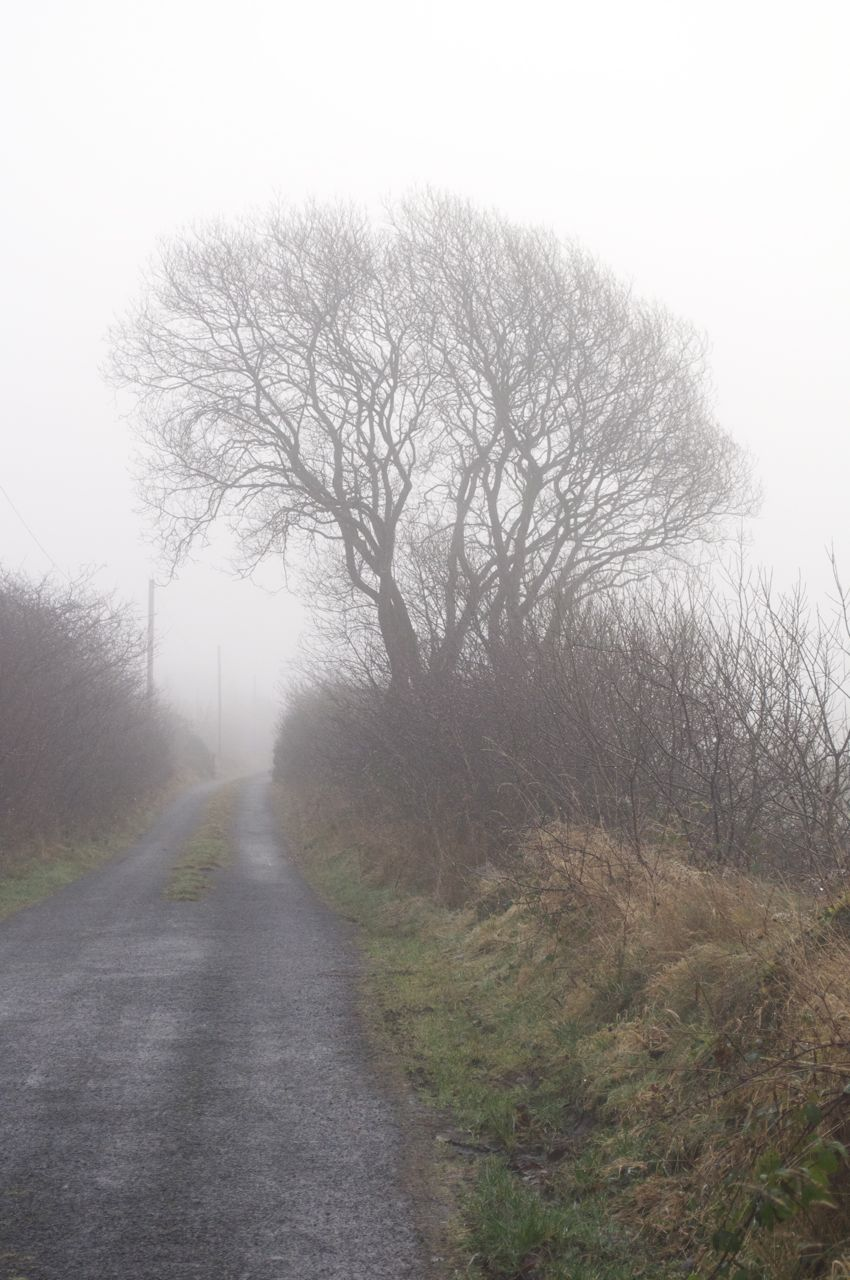 9th January 2013 - 9am - the fog that stayed all day