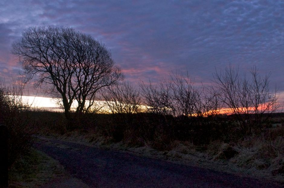 26th January 2013, 8.00am - mild start...