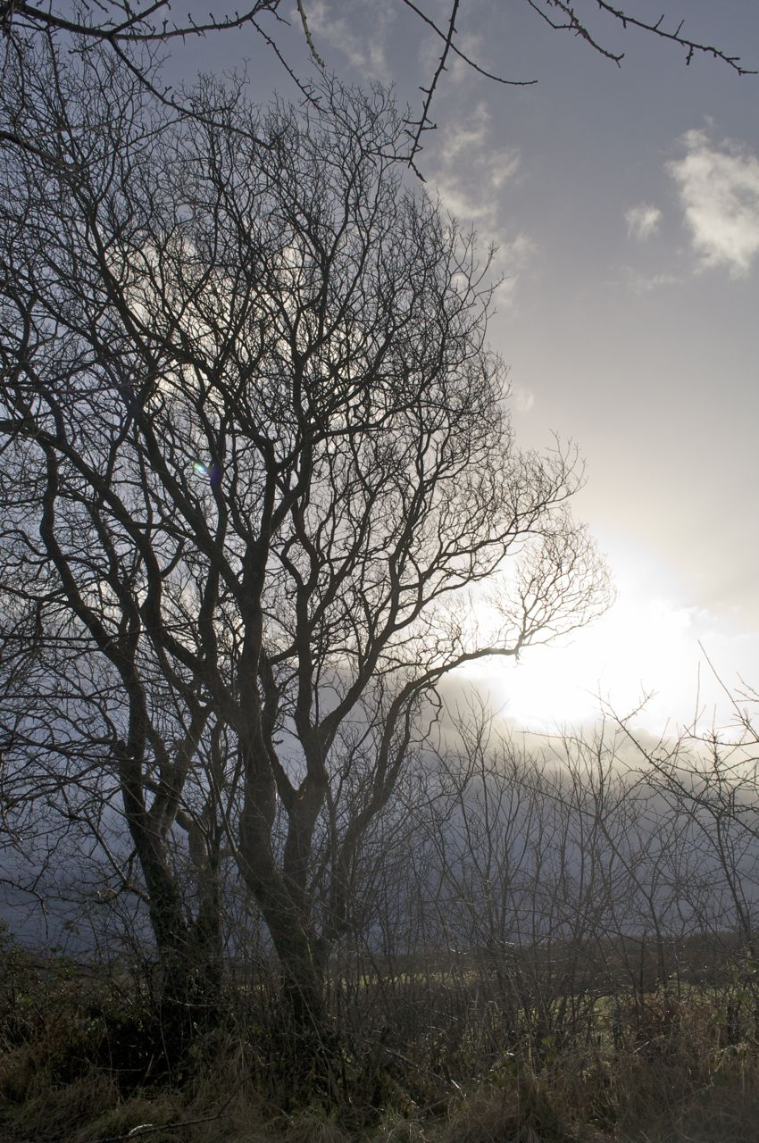 28th January 2013, 11.50am  -a bright break in the stormy sky...