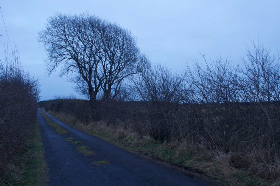 15th February 2013, 5.55pm - the end of a mild spring day