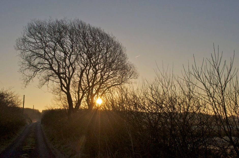 24th February 2013, 8.00 am - nice to see the sun on a frosty morning
