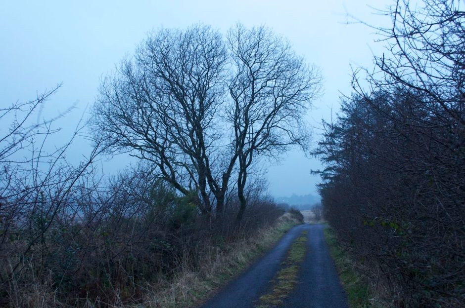 6th March 2013, 6.15pm - misty day