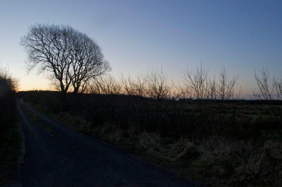 11th March 2013, 6.41 am- cold bright day