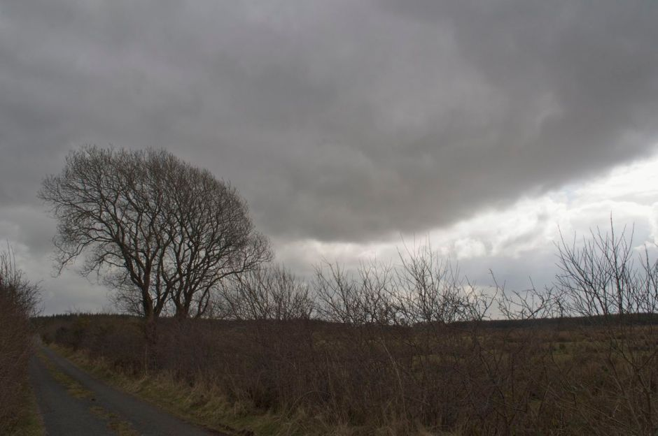24th March 2013, 7.00am - cloudy and very very cold...