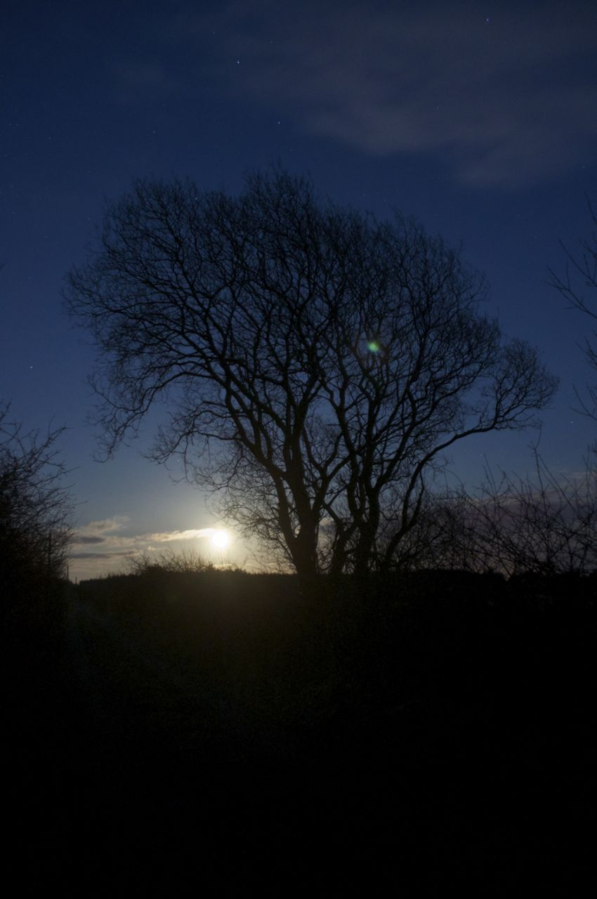 27th March 2013, 8..30 pm- moon rise on a frosty night